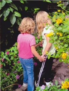 Discovering together at Brookside Gardens