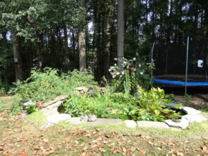 Raised Vegetable Garden Pond (2)