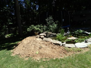 Raised Vegetable Garden Pond (3)