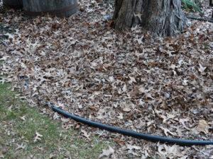 mulch leaves 004