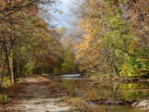 Carderock-C-O-Potomac-landscape-frame-059.JPG